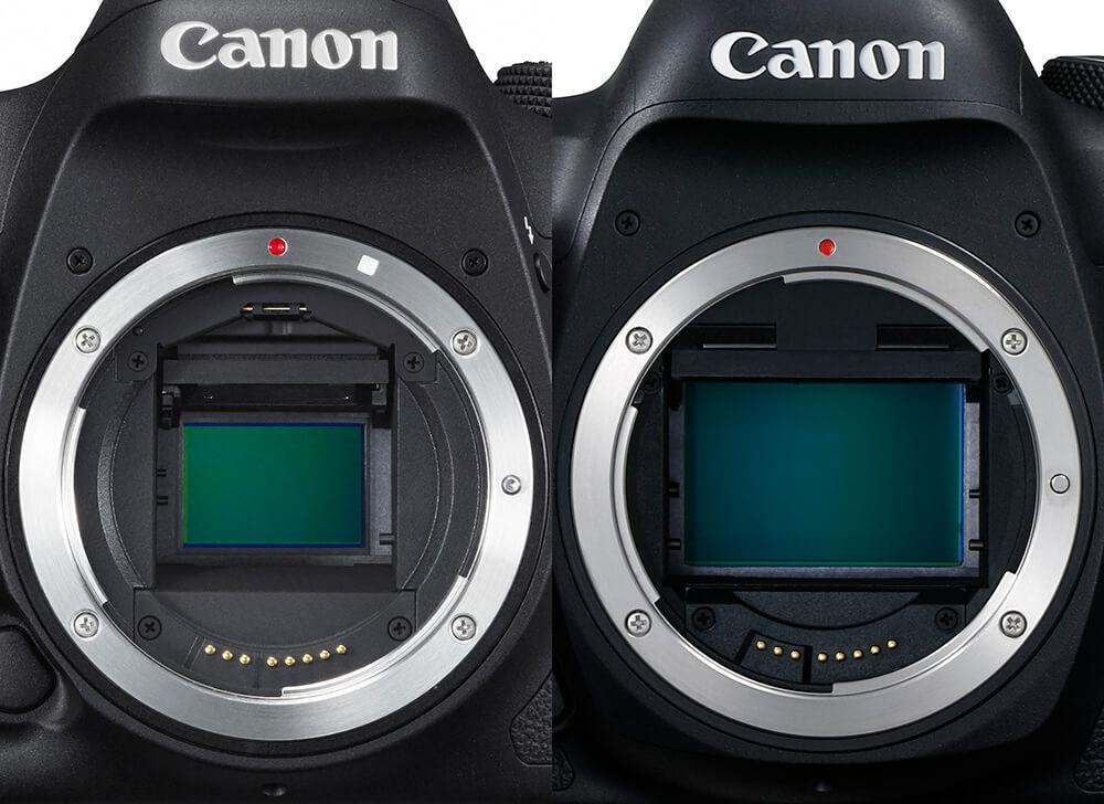 тип матриц зеркальных фотоаппаратов достижении совершеннолетия, святой