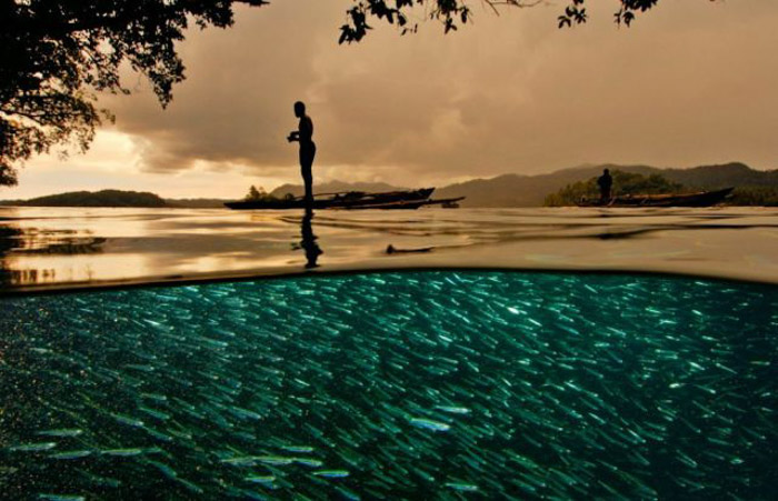 A person standing beside a turquoise pool full of fish in golden evening light, shot with a wide angle camera lens.
