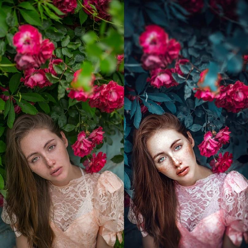 Красивая обработка фотографий цветогармонизация картофельной